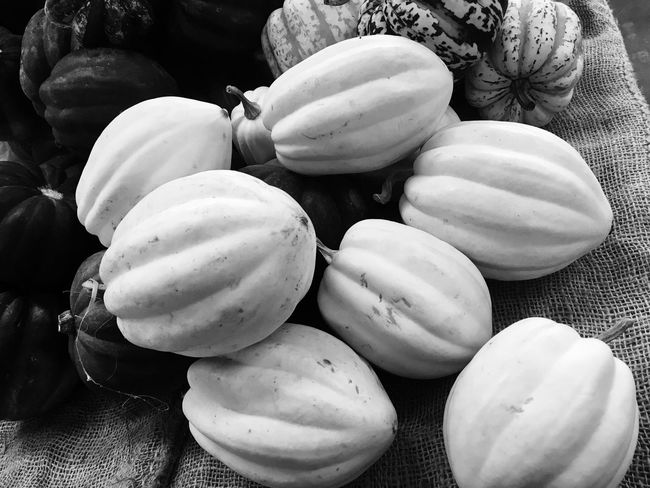 EyeEm Selects Oh my gourds Food And Drink Still Life No People Large Group Of Objects Freshness Close-up Food Gourd Gourds