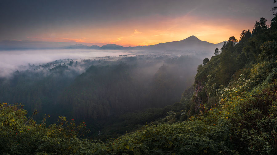 magical morning sunrise view located in tebing keraton, bandung Beauty In Nature Scenics - Nature Sky Tranquil Scene Mountain Plant Tranquility Tree Environment Non-urban Scene Fog No People Nature Sunset Mountain Range Idyllic Cloud - Sky Hazy  Landscape Orange Color Outdoors