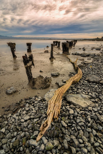 An long-lost wharf in Humboldt Bay, California. Sky Sunset Cloud - Sky Water Beach Land Tranquil Scene Tranquility Horizon Beauty In Nature Scenics - Nature Nature No People