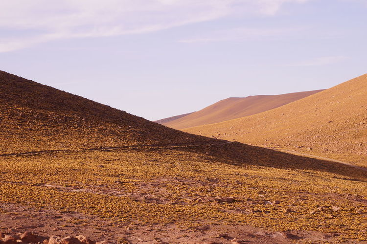 4500 Metros De Altura Sobre Ni Desert Desert D'Atacama Mountain Nature Outdoors Scenics Sombras Y Curvas EyeEmNewHere EyeEm Diversity