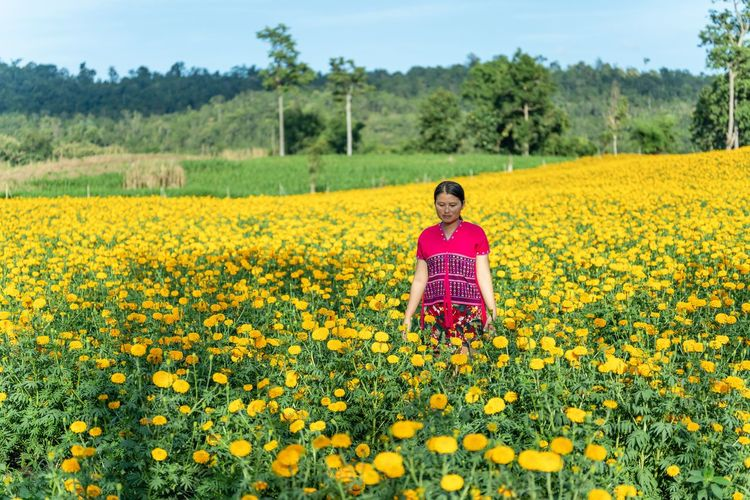 Contemplating young woman standing in marigold field