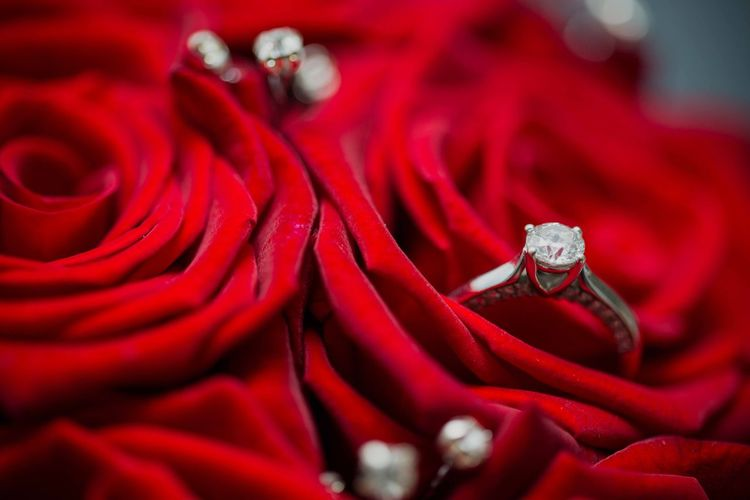 Red Jewelry Ring Diamond Ring Full Frame Close-up Rose - Flower Engagement Ring Wedding Celebration No People Love Precious Gem Indoors  Flower Silk Luxury Day Macro Wedding Photography
