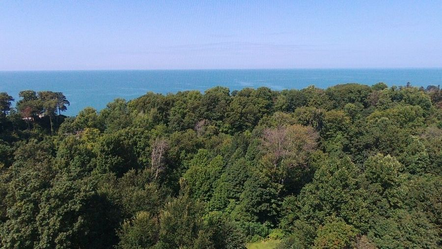 shot in Lake erie's beautiful waters for 200 feet up Lake City PA overlooking Lake Erie aerial Drone footage Tree Growth Nature Sea Plant No People Day Outdoors Landscape Sky