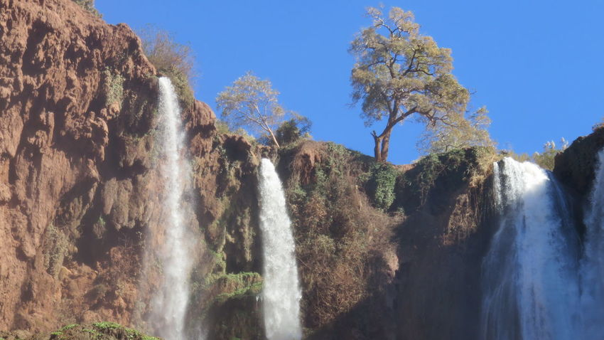 ouzoud waterfalls in morocco Beauty In Nature Clear Sky Close-up Day Growth Low Angle View Mountain Nature No People Outdoors Ouzoud Falls Scenics Sky Sunlight Tree Water Waterfalls