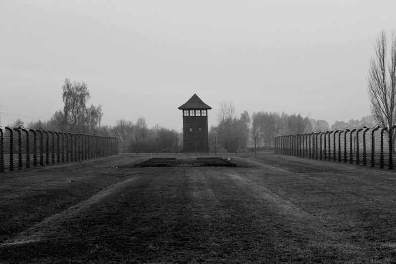 Fog Nature Sky Tree Built Structure No People Landscape Agriculture Grass Beauty In Nature Water Outdoors Day EyeEmNewHere Blackandwhite Black And White Black & White Auschwitz  Birkenau Memorial Scenics Open Space Welcome To Black Resist