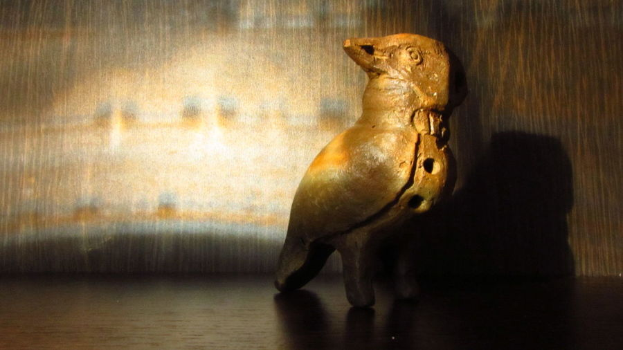 Clay Bird Experiment Animal Themes Close-up Handmade Light&shadow Warm Colors Whistle