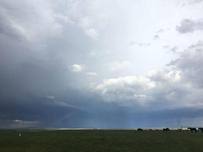 彩虹 rainbow Rainbow Cloud - Sky Sky Beauty In Nature Nature Land Day Tranquility Outdoors Landscape Plant