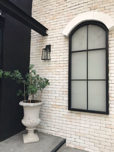 Building Exterior Architecture Built Structure Building Window Plant No People House Residential District Nature Growth Wall Potted Plant Day Brick Wall Entrance Wall - Building Feature Outdoors Brick Door