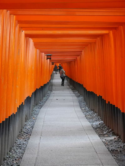 Torii Leading To Fushimi Inari Shrine
