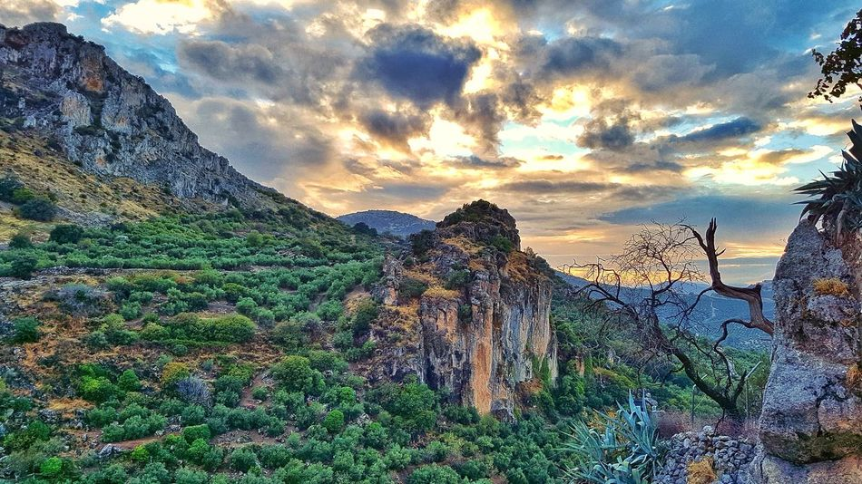 Nature Tree Beauty In Nature Sky Outdoors Scenics Landscape No People Cloud - Sky Day Tranquility Spain🇪🇸 AndalusiaZuheros Village White White Towns After Rain Falls Sunshine. After Rain Evening Mountain Scene Sunset Scenic Sierras Subbeticas