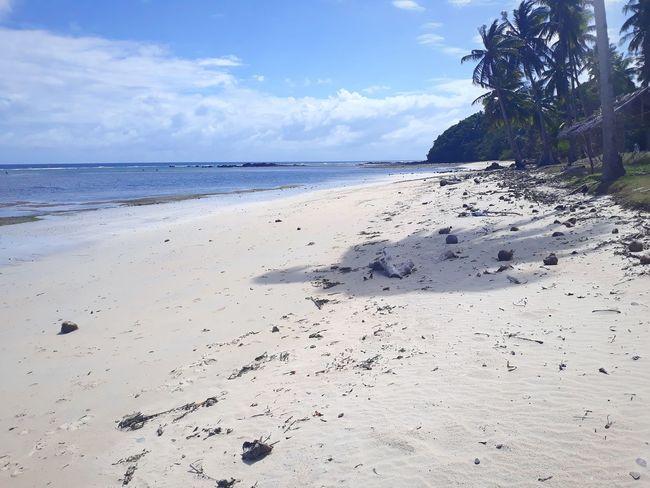 Water Tree Sea Beach Sand Low Tide Blue Sunlight Summer Sky Tide Surf FootPrint Crashing