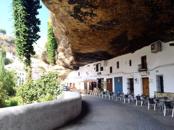 Setenil Spain Tree Day Building Exterior Tourism Travel Tranquility Travel Destinations