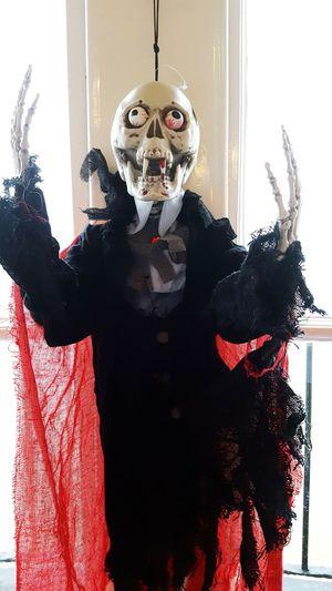 Happy Halloween. Puppet Skulls♥ Skeleton Eyes Eyeballs. Costume Fresh On Eyeem  Ayeshea Bah Colours EyeEm Gallery No People Close-up Indoor Photography Clothing