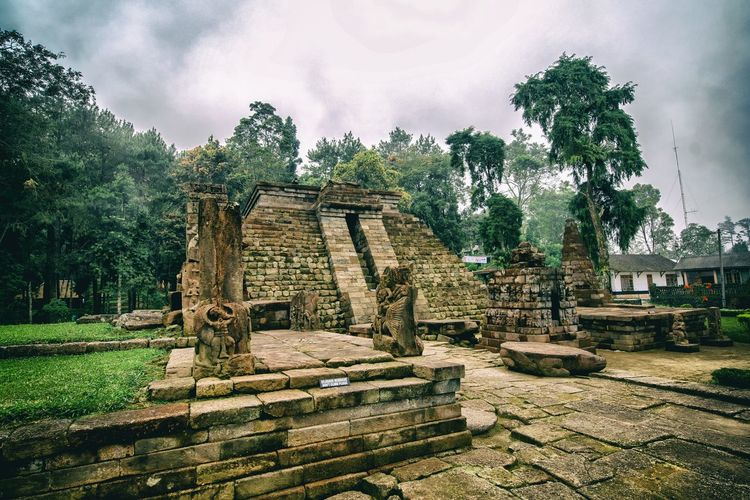 Temple of Sukuh The Traveler - 2018 EyeEm Awards INDONESIA Instanusantara EyeEm Gallery EyeEmNewHere EyeEm Best Shots Temple Sukuh Temple Tree Shadow Sky Architecture Built Structure Grass Old Ruin Archaeology Ancient The Past Historic Pyramid Ruined