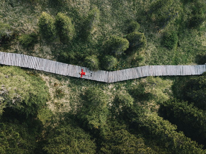 People Watching Standing Aerial View Architecture Bridge Bridge - Man Made Structure Built Structure Connection Different Perspective Foliage Forest Green Color Growth High Angle View Land Lush Foliage Nature Outdoors People people and places People Photography Plant Portrait Road Tree The Week On EyeEm Editor's Picks The Great Outdoors - 2018 EyeEm Awards The Traveler - 2018 EyeEm Awards Capture Tomorrow