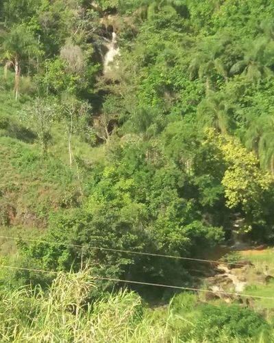 Que Cachoeira pft mano 😍😍❤ Cachueira Maravilhosa Obraprimadedeus Paisagem Bomdia