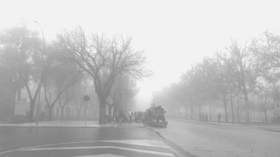 nuestros mayores se suben al tren Lamiradadeletnólogo Callesocial Fog Tree Winter Street City Outdoors No People Cold Temperature Bare Tree Day Sky Nature