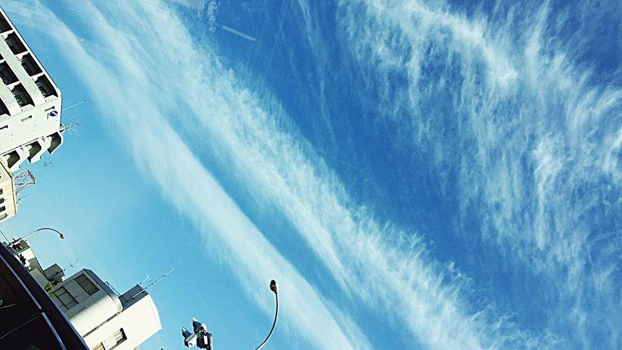 えぇ――――天気 Cloud - Sky Low Angle View Sky Day Communication Outdoors Architecture Building Exterior No People Built Structure Nature Kyoto City