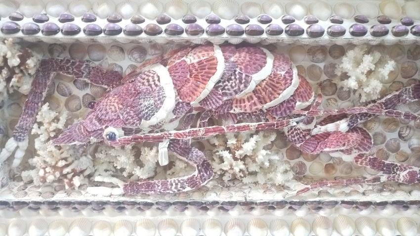 This lobsters is made from seashells. No People ArtWork Art, Drawing, Creativity Lobsters Lobsterworks Art Deco Pattern Seashells Seashell Collection Seashell Art Seashellart