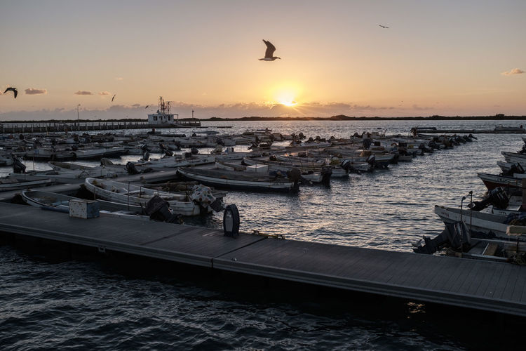 Harbor at sunset Bird Bridge - Man Made Structure City Flying Harbor Horizon Over Water Mode Of Transport Moored Nautical Vessel Outdoors Pier Saudi Arabia Sea Silhouette Sun Sunset Tourism Tranquility Transportation Travel Travel Destinations Vacations Water