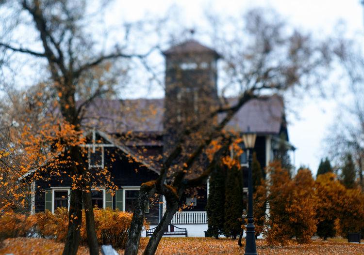 Experimental tilt-shift lens Helios 44-2 Minsk,Belarus Architecture Autumn Beauty In Nature Helios 44-2 Loshica Nature Outdoors Tree