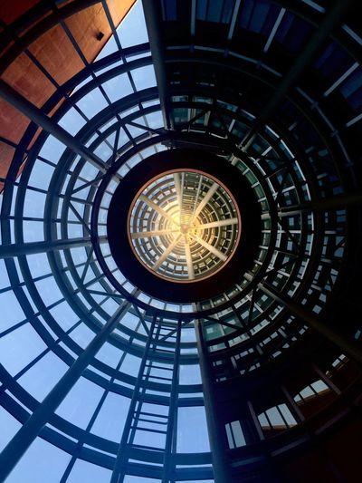 looking up Omotesando Tokyo Architecture Circles The Architect - 2016 EyeEm Awards
