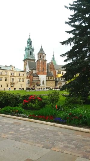 Cathedral Castle Wawel Krakow Poland
