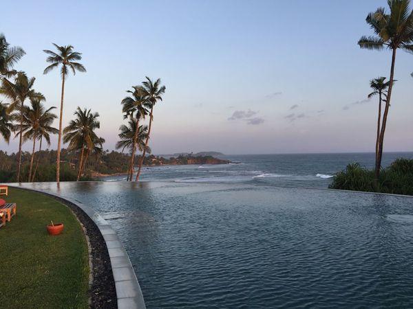 Beach Beauty In Nature Day Infinity Pool Nature No People Outdoors Palm Tree Scenics Sea Sky Sri Lanka Sri Lanka Travel Travel Destinations Tree Tropical Climate Water Welligama