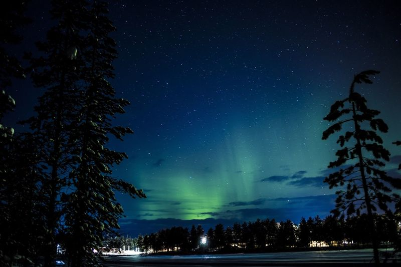 Low angle view of aurora borealis in sky at night