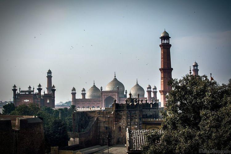Flock Of Birds Flying Over Mosque