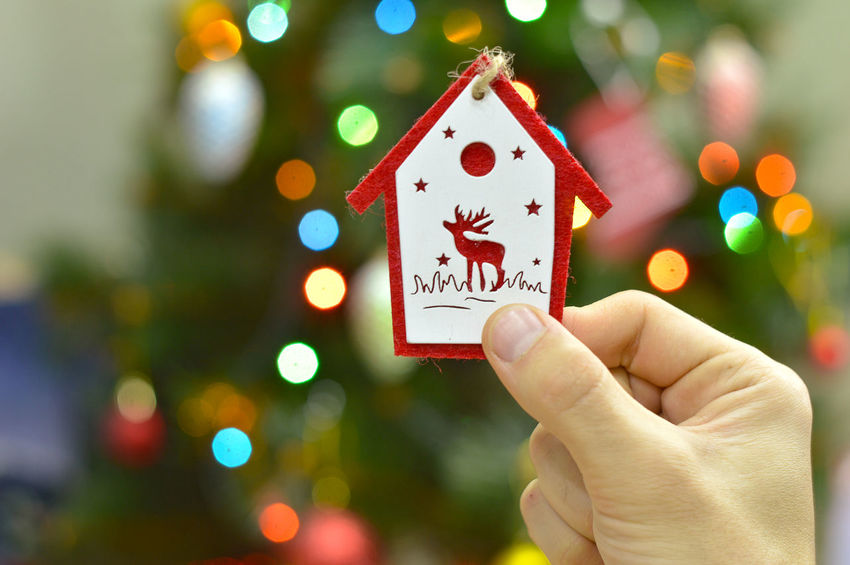 Hands Decorating Christmas tree with bauble, New Year decoration Adorn Ball Celebration Christmas Decorations Christmas Lights Christmas Tree Close-up Colorful Decor Festive Finger Focus On Foreground Garland Golden Hanging Holding Holiday Home Human Hand Indoors  Light Male People Red Surprise