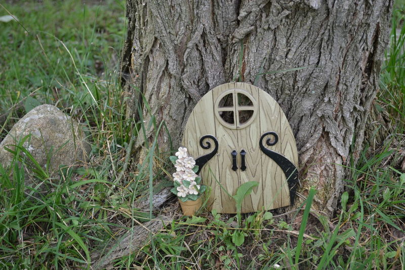 Day Fairy Door Fairy Garden Grass No People Outdoors Panama Rocks,NY Tiny Door Tree Tree Trunk