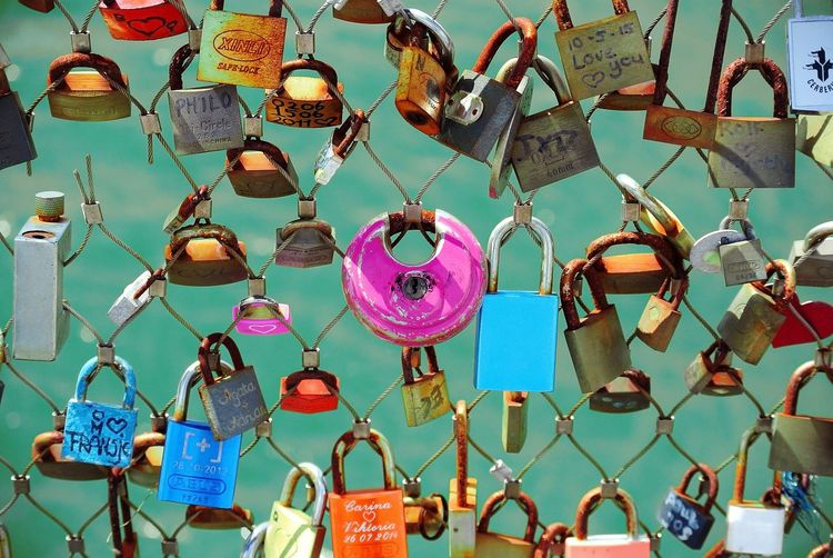 Colorful Padlocks Attached On Fence