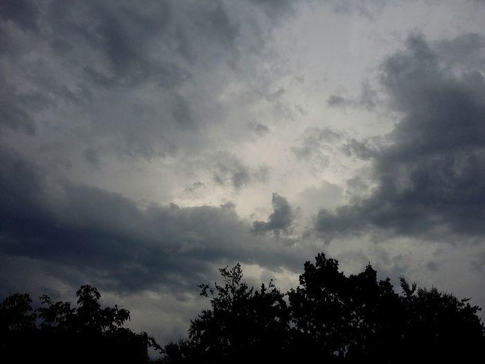 Here Comes The Rain. · Hamburg Germany 040 Rain Rain☔ Rain Clouds Rainy Day Clouds And Sky Gray Sky Trees Tree Crowns Tristesse Melancholy