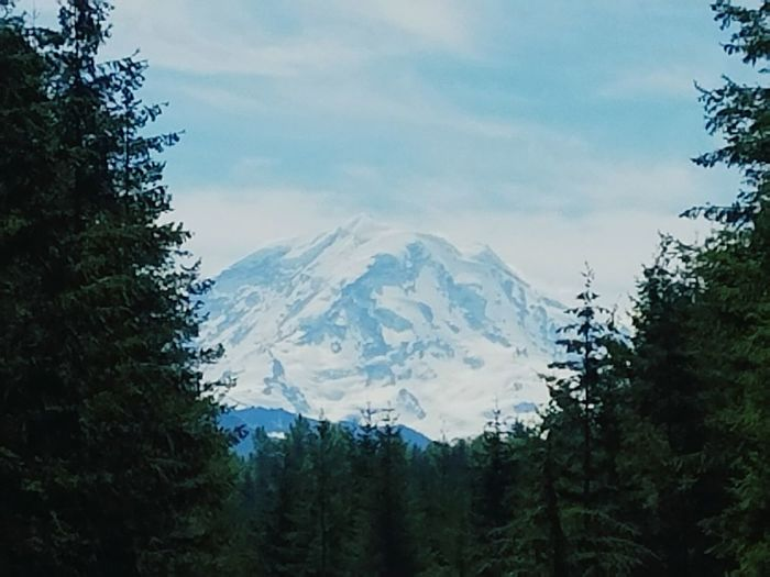 From my basically back yard Beauty In Nature Mountain Range Travel Destinations Snow Landscape Outdoors Nature Mountain Never Let Life Pass By GodIsGoodAllTheTime Mount Rainier, Washington, Nature, Freshness Caught In The Moment Kirt_Earney's Photo. No Copyright Aloud Ease Your Mind Landscape Picture Perfect Perfection❤❤❤ Pure Beauty Life Rural Scene Visual Feast The Great Outdoors - 2017 EyeEm Awards The Portraitist - 2017 EyeEm Awards EyeEmNewHere