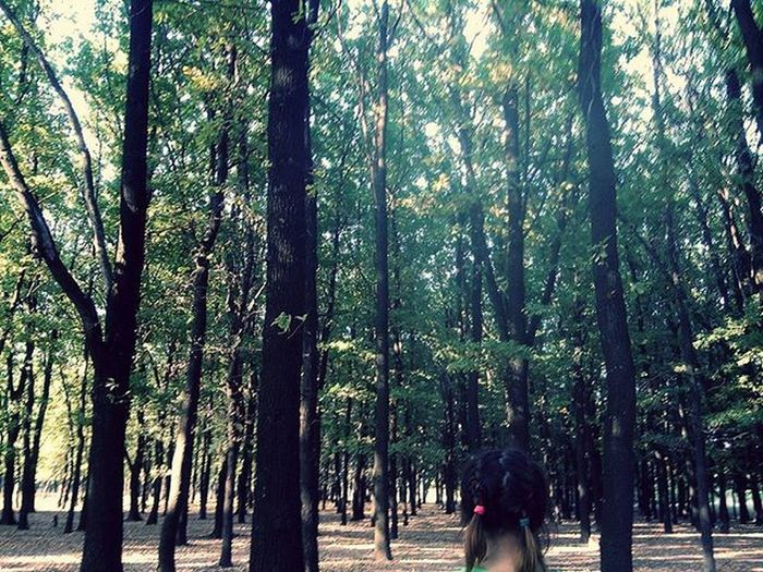 +1 фото от Лето2015 😌 фотослето Лес тамдерево пхипхи лол лойснименя лойс Донецк паркдонецка кактотак туризм передсоревнованиями нуда хвастанулся нуилан Theend