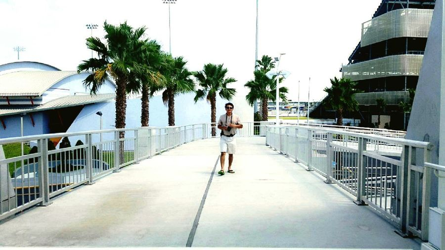 Father Bridge