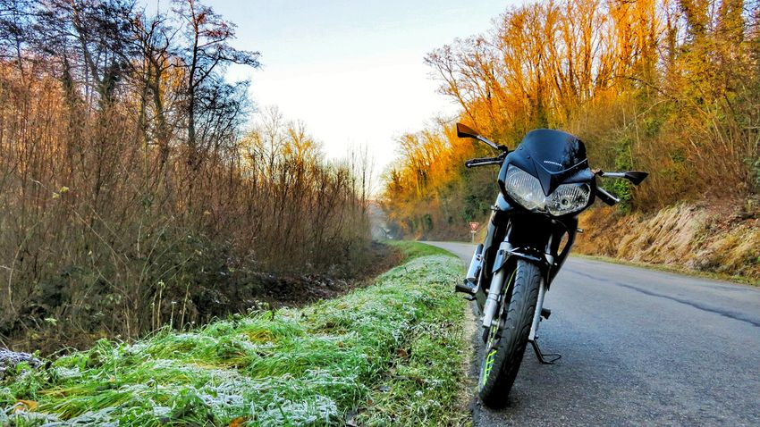 Traveling Home For The Holidays Bicycle Transportation Mode Of Transport Sunlight Grass Nature Tree Outdoors Beauty In Nature Sky Moto Motorcycle Motorcycles Cbr Cbr125 Cbr125r Honda Motorcycle Honda Canon Canonpowershot Photo Canonphotography Photography Beautiful Sunset