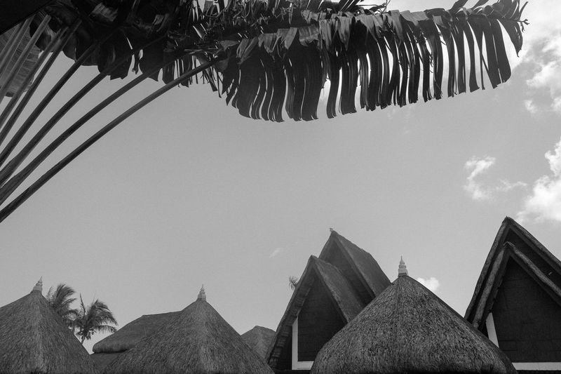 Rooftops of Bali-inspired villas in a resort. Bali Balinese Beach Resort Black & White Black And White Getaway  Holiday Resort Tropical Vacations Villas,