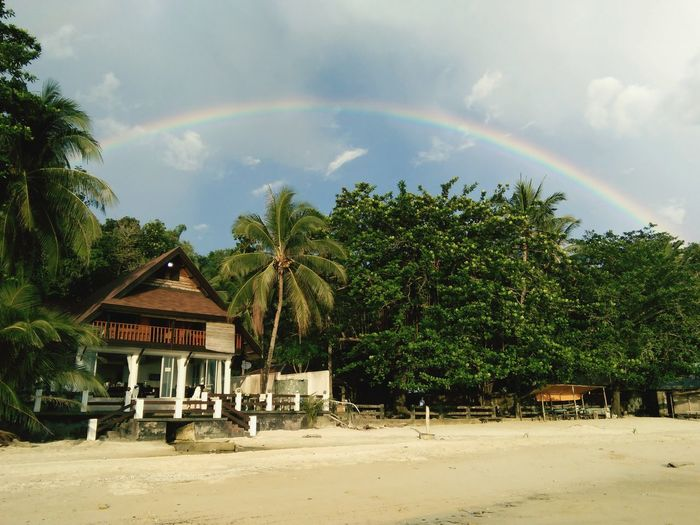 Rainbow and