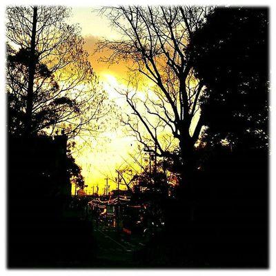 🌇 夕焼けが出ました🎶😉 Sunset came out🎶(*^^*) ※ ※ 名古屋港 Port_of_Nagoya 日本 Japan Aichi Nagoya 夕焼け Sunset 夕暮れ Dusk 夕陽 Settingsun 自然 Nature 安らぎ Peace 眩しい Dazzling 夕空 Evningsky 綺麗 Beatiful 風景 Landscape Orange vista 🌇