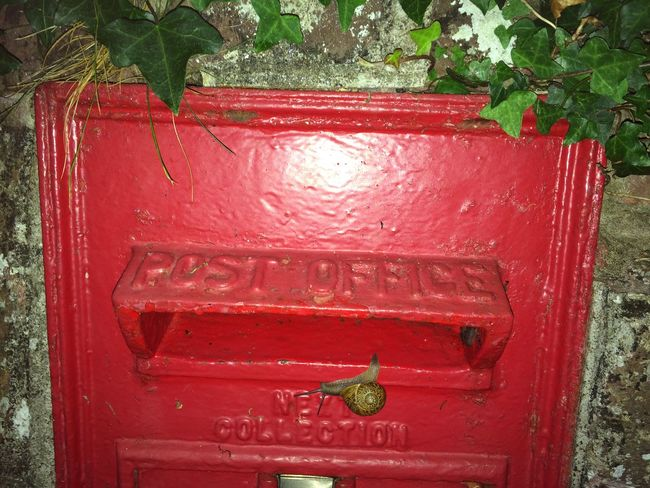 Snail Mail Letterbox Postbox
