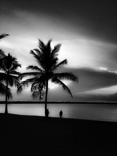 3 Men Standing Palmtrees Sillouettes Sunset Sea Sand Picturesque Golden Hour Artistic Fine Art Sun Rays Ripples In The Water Blackandwhite Dramatic Sky Cloudporn The Roll Showcase July Fine Art Photography Nature Photography Creative Photography The Week Of Eyeem EyeEm Best Shots Landscape_Collection Water_collection Fresh On Eyeem