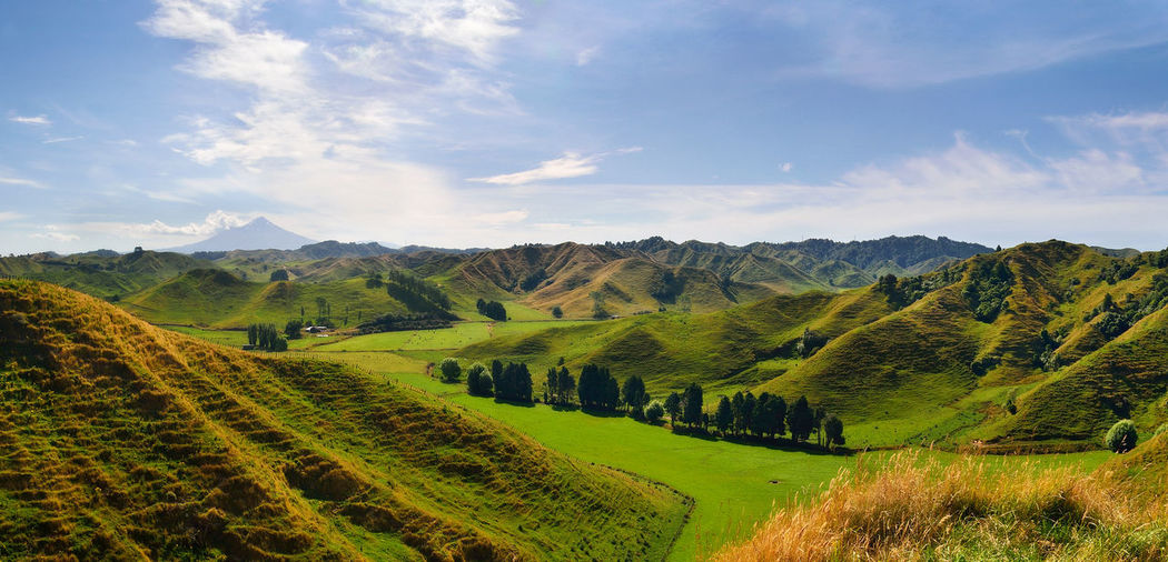 New Zealand New Zealand Beauty New Zealand Scenery New Zealand Landscape Panorama Panoramic Beauty In Nature Cloud - Sky Day Field Grass Green Color Landscape Mountain Mountain Range Nature New Zealand No People Outdoors Panoramic Photography Rural Scene Scenics Sky Tranquil Scene Tranquility Tree The Great Outdoors - 2018 EyeEm Awards