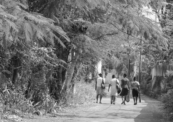 Bahamas Black And White Blackandwhite Caribbean Caribbean Life Day Island Life Large Group Of People Nassau Nassau, Bahamas Old Bahamas Outdoors Real People The Bahamas Tree Walking Women Women Around The World