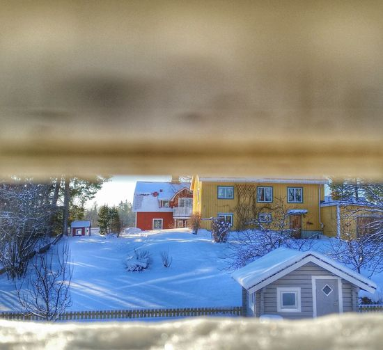 Good Morning Under The Curtain Curtain Snow Bakyard Sunshine Sunny Day Taking Photos Check This Out Hello World