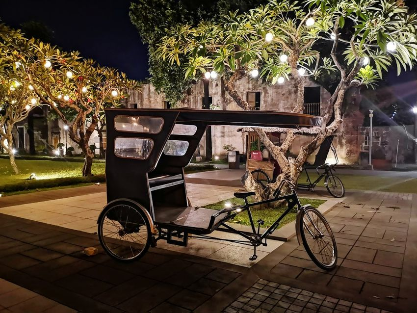 Rickshaw Eyeem Philippines EyEmNewHere Tree City Bicycle Park Bench Street Art Rickshaw