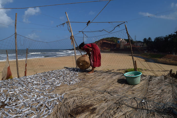 Travel Traveller Travelling Explore Konkan Street Photography Fresh Fish Food Preservation Lady Beach Beachlife People Of The Oceans Original Experiences On The Way