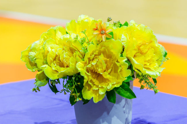 Vase Vase Art Beauty In Nature Bouquet Close-up Day Flower Flower Head Fragility Freshness Indoors  Nature No People Petal Vase Decoration Vase Of Flowers Yellow