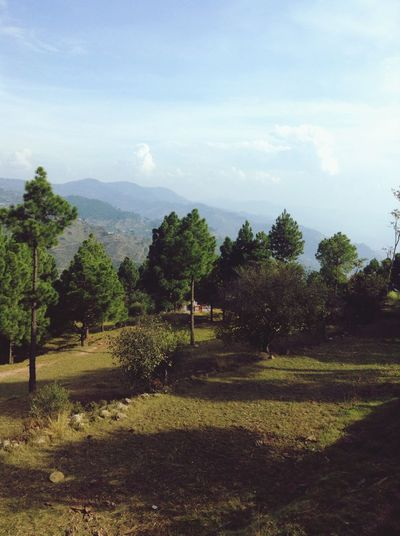 Khasmir Beautiful Lovely Natue Myland  Mountains Tree